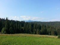 Bukowina Tatrzańska, góry
